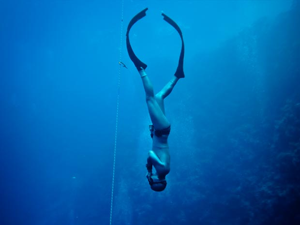 Freediving Basic Instructor Course on Nov 17-18th, 2018