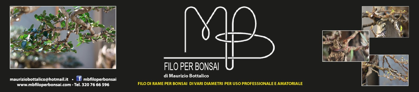 MB Filo per Bonsai