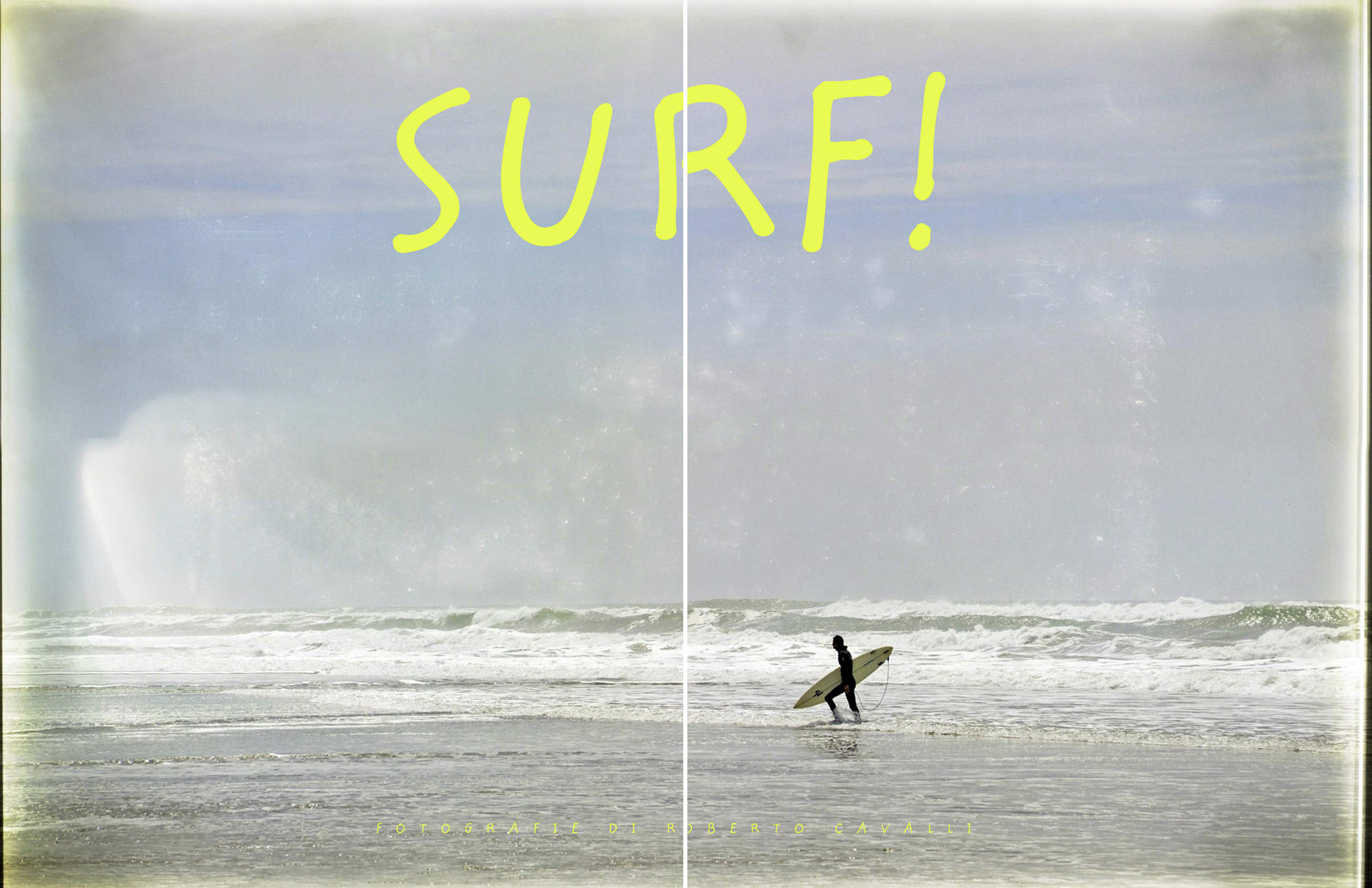 "BUY ""Surf!"" THE  BOOK"