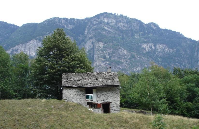 Affittasi : Baita in montagna a Varzo in località Alpe Algime