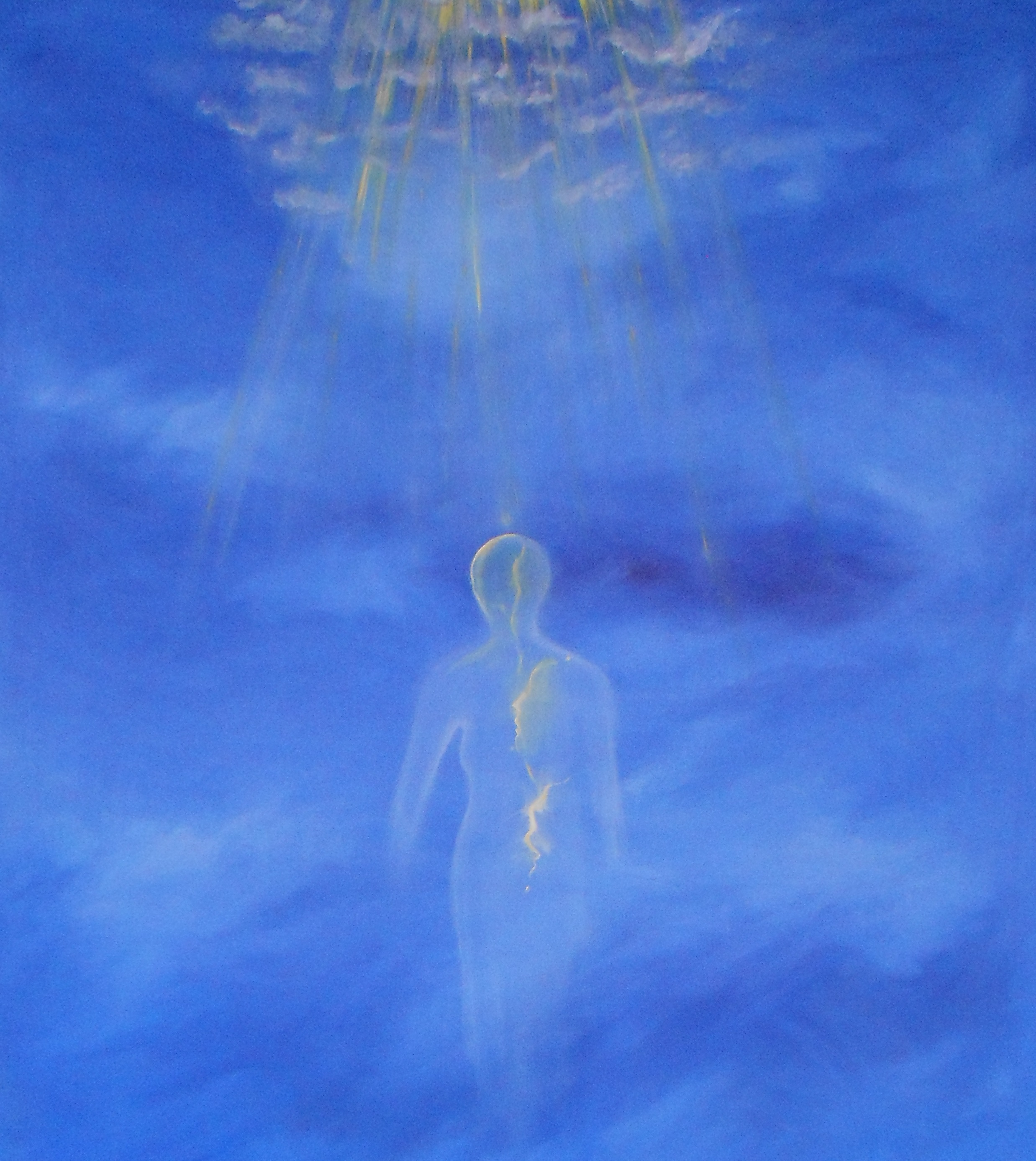 oil on canvas/olio su tela, 120 x 210 cm, 2014