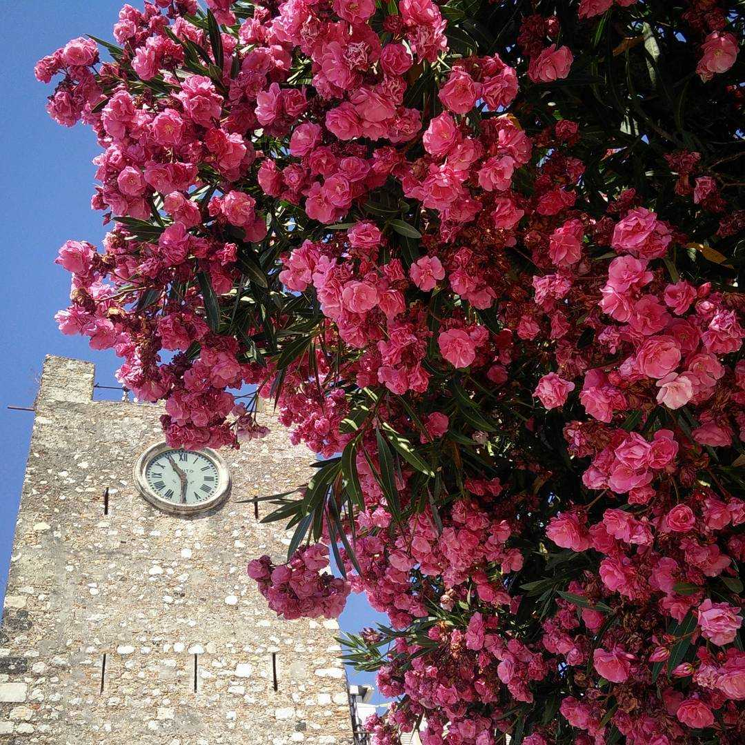 Taormina Clock Tower