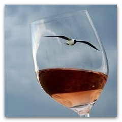 Spumarche - Vino e Dintorni - Eiswein - Gakkeria Index
