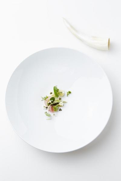 Spumarche - Geranium - Cipolle biodinamiche con aceto di camomilla e fonduta di formaggio stagionato nel fieno - Ph© Claes Bech-Poulsen