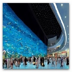 Spumarche - Museum & Co. - ♥ Dubai Aquarium & Underwater Zoo