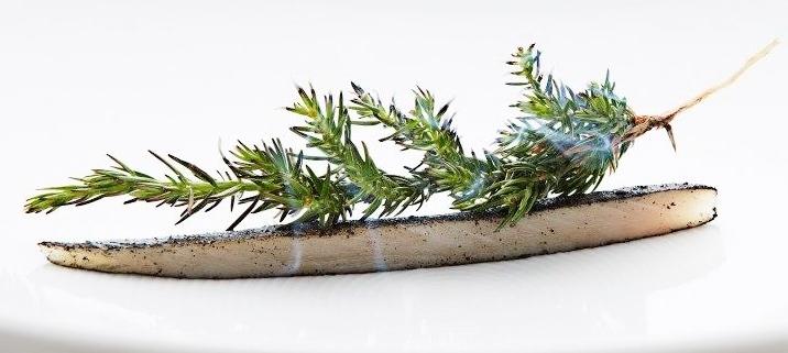 Spumarche - Crocevia di Sapori - Rasmus Kofoed - Geranium - Copenhagen -  Michelin ***