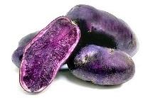 Spumarche - Le patate Vitelotte  -  Vitelotte - noire