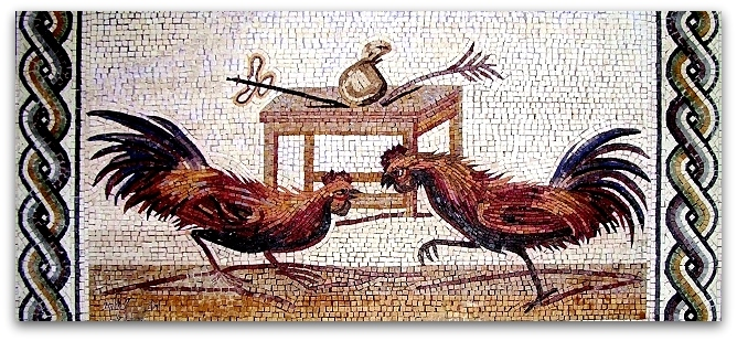 Spumarche - Opinioni - Combattimento di galli - © Museo Archeologico Nazionale - Napoli