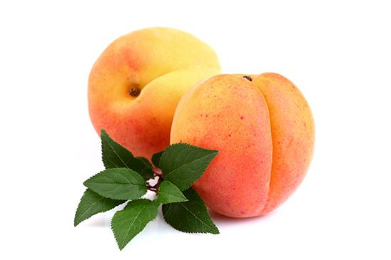 Aprikosen in Sirup