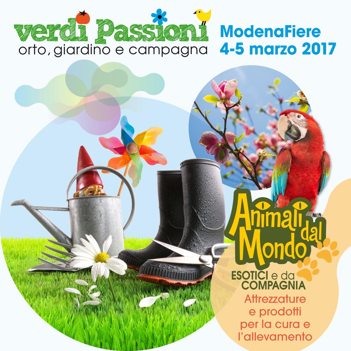 Banner Verdi Passioni
