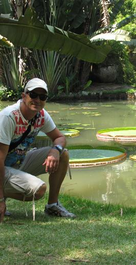 Giardino Botanico di Rio De Janeiro, Brasile