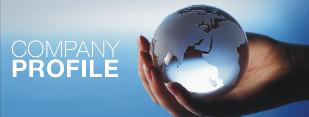 Company profile euro energia srl