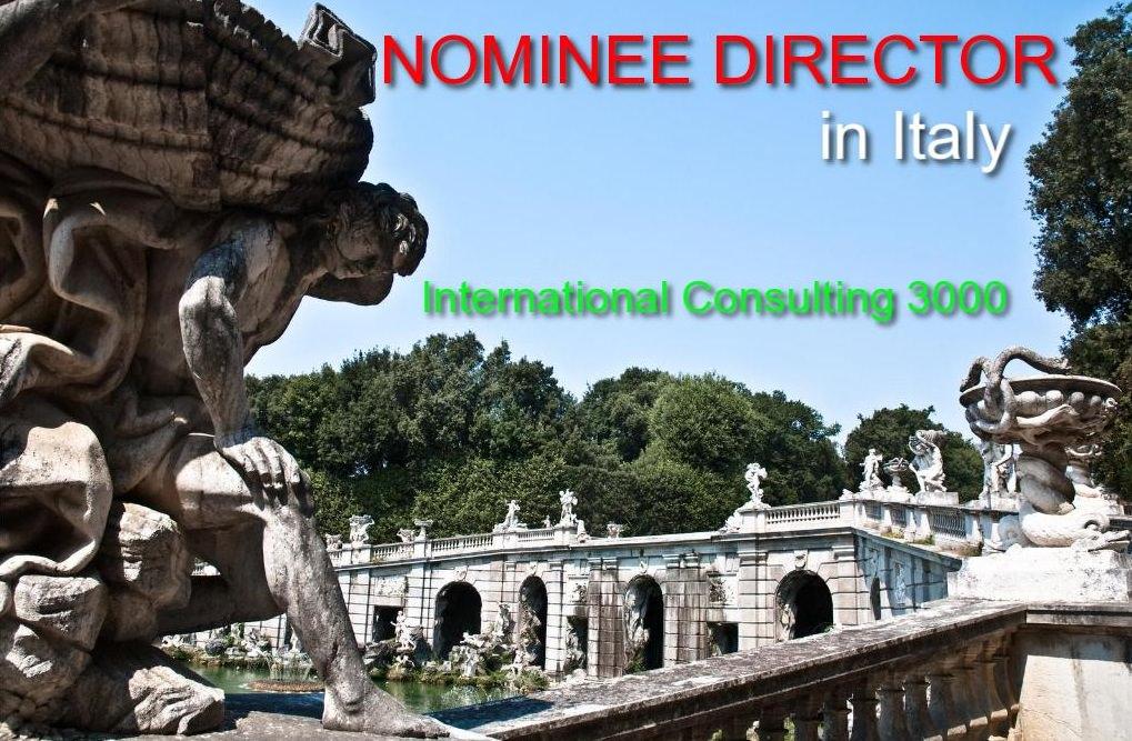 COMPANY DIRECTOR SERVICE IN ITALYA