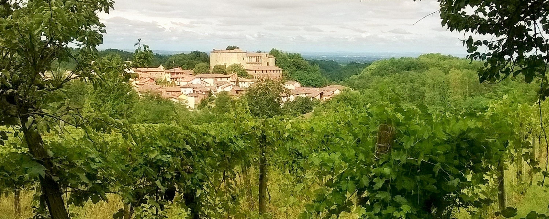 OS Castle e B&B Castello - Tel +39 388 844 4343 - Email info@ositaly.com - Dimora Storica e B&B  nel Castello di Tassarolo