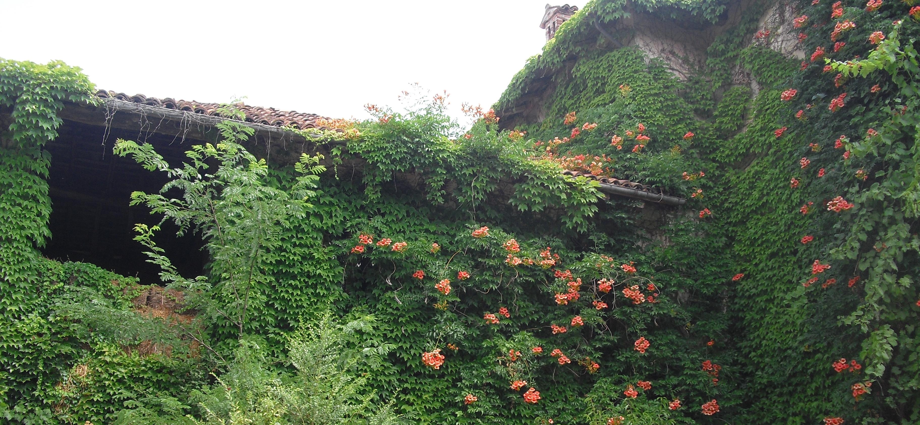 OS Castle - Appartamento nel Castello di Tassarolo - Tassarolo e dintorni