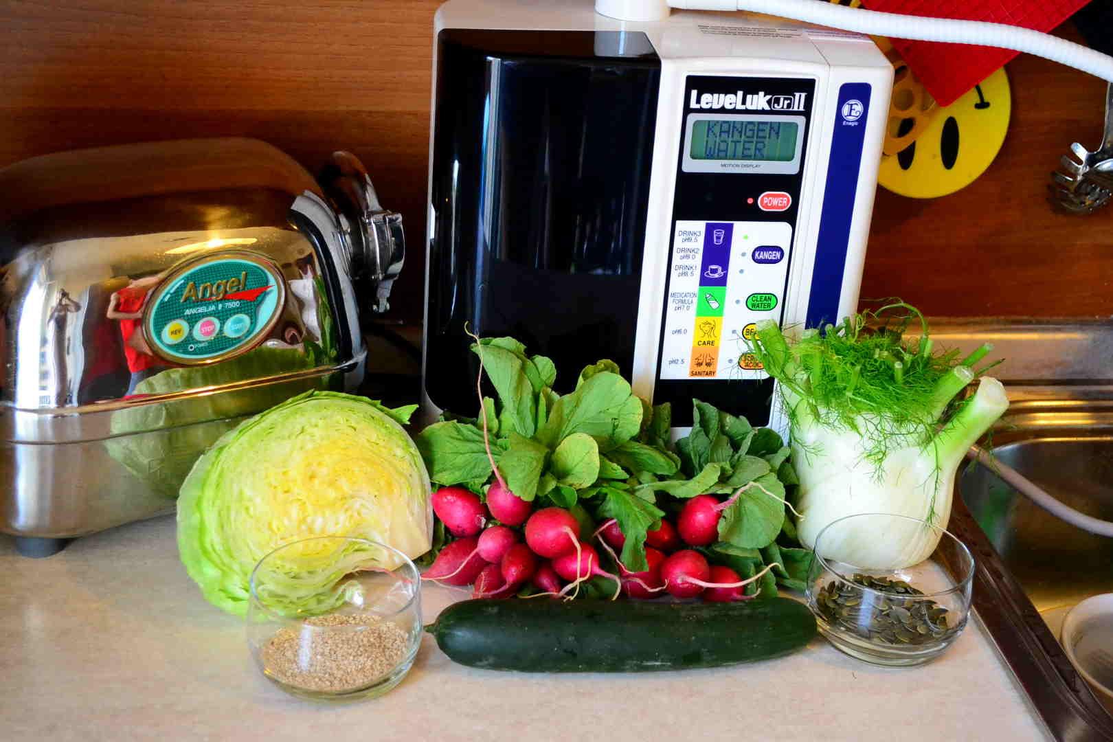 acqua kangen leveluk ionizzatore enagic junior angel insalata ravanelli cetriolo semi finocchio