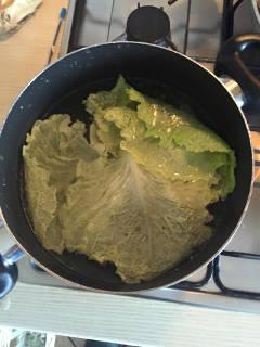foglie foglia verza sbollentata bollita bollore acqua bollente ammorbidire ammorbidita ammorbidirsi