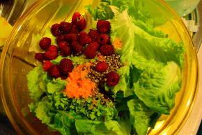 lamponi canapa semi insalata