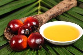 olio di palma raffinato
