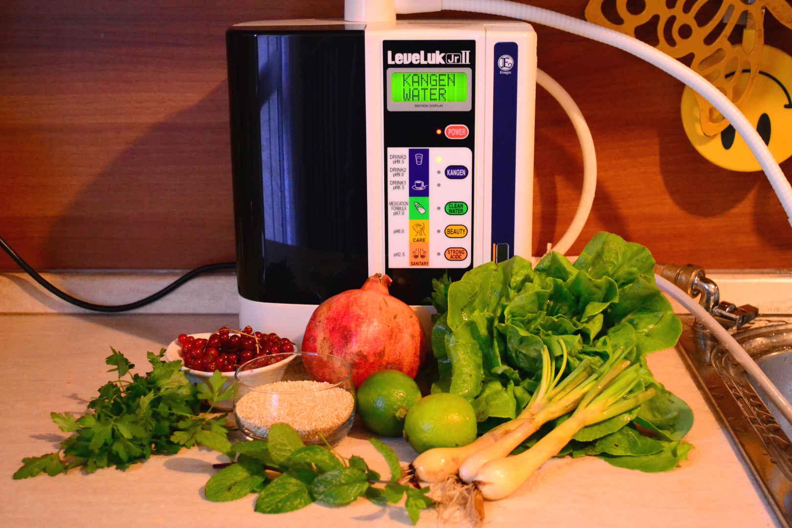 acqua kangen vivere salutariani salutare ionizzatore alcalina ribes melograna quinoa lime scalogno menta