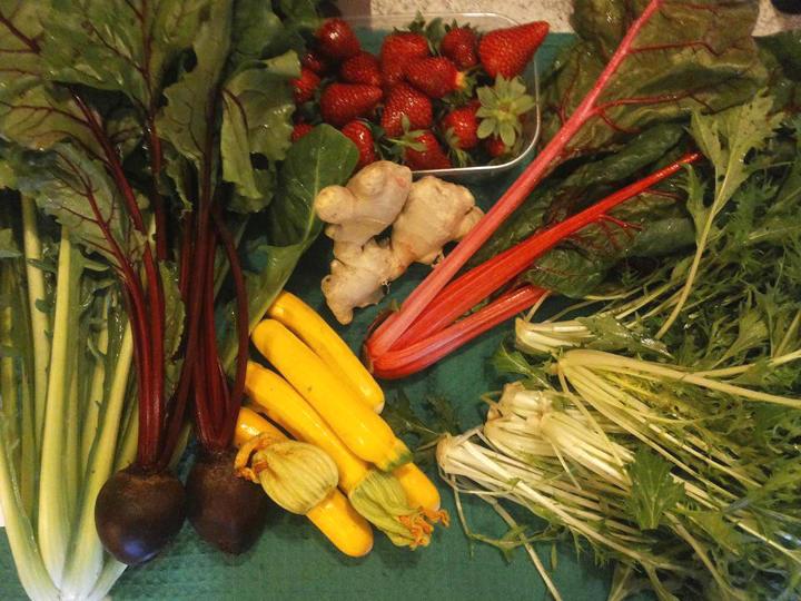 verdura fresca stagione zucchine gialle rape rosse zenzero fragole sedano cicoria