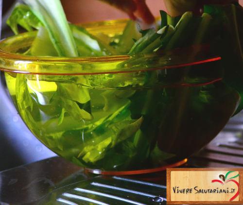 insalata lavata pulita ciotola gialla