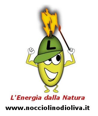 Biomassa Italiana, L'Energia dalla Natura