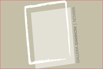 galleria d'arte moderna paolo e adele giunoni novara broletto