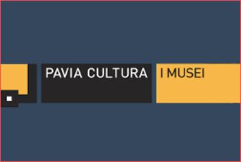 pavia musei civici
