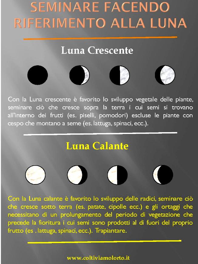 Calendario Lunare Orto.Fasi Lunari Per Semina Orto Affordable Il Calendario Lunare