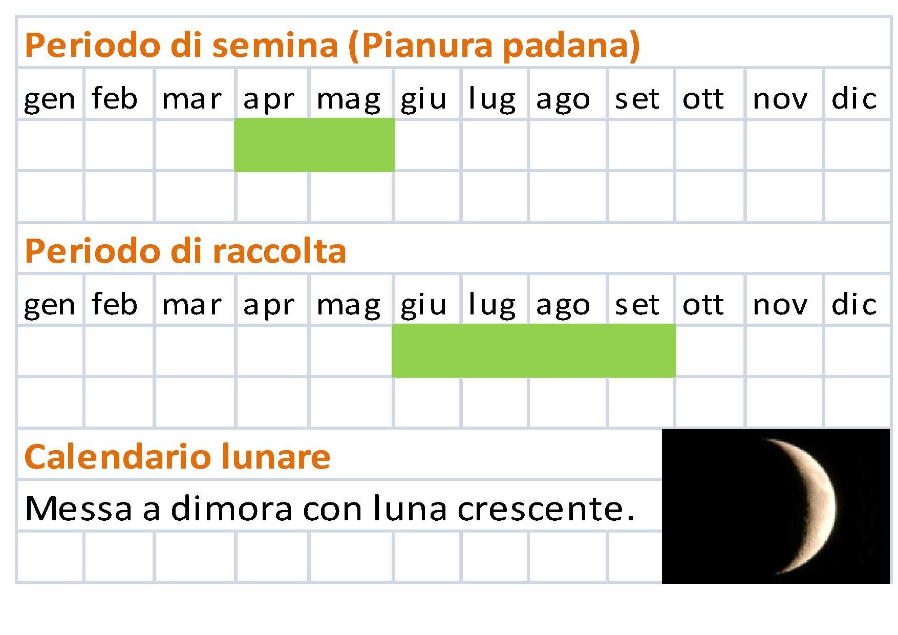 Calendario Lunare 2020 Semine.Calendario Di Semina Degli Ortaggi Il Calendario Della