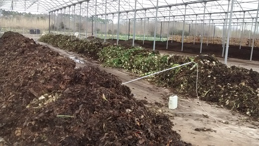 Interventi per la filiera compost