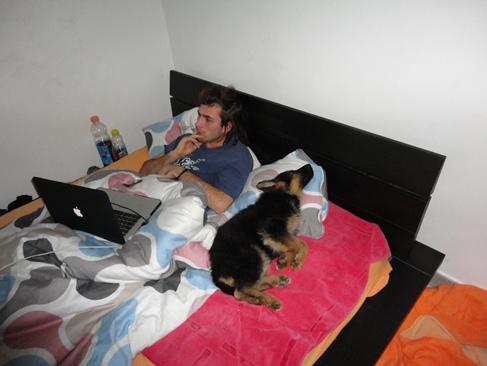 Il cucciolo - Letto in tedesco ...