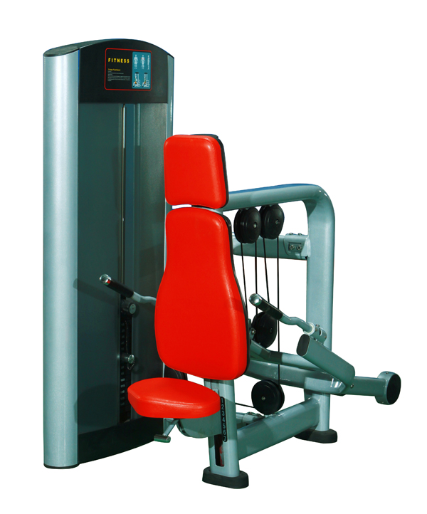 Arm Extention Triceps Machine