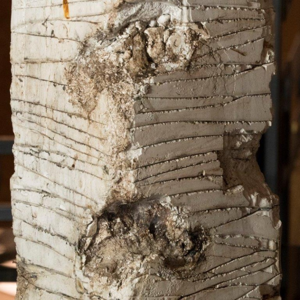 Matteo Giampaglia Abstract Plaster Sculpture