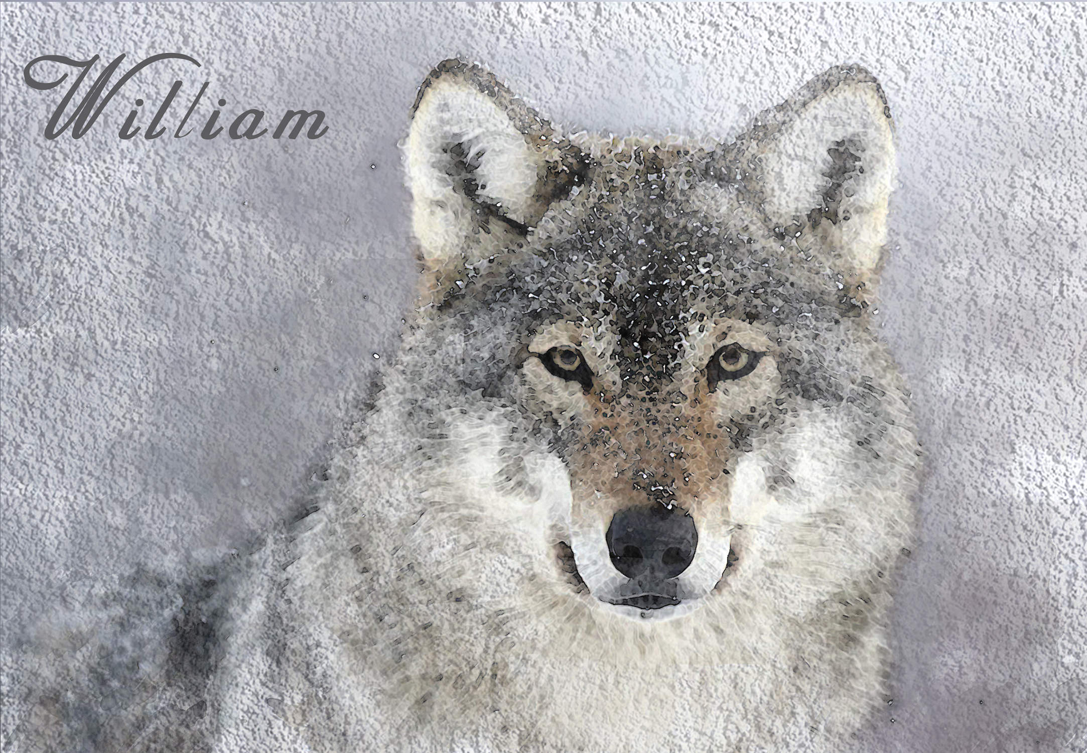 Wolf - cm.24x30. Your pet with your name. Sweet gift idea!