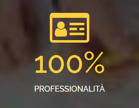 professionalitpng