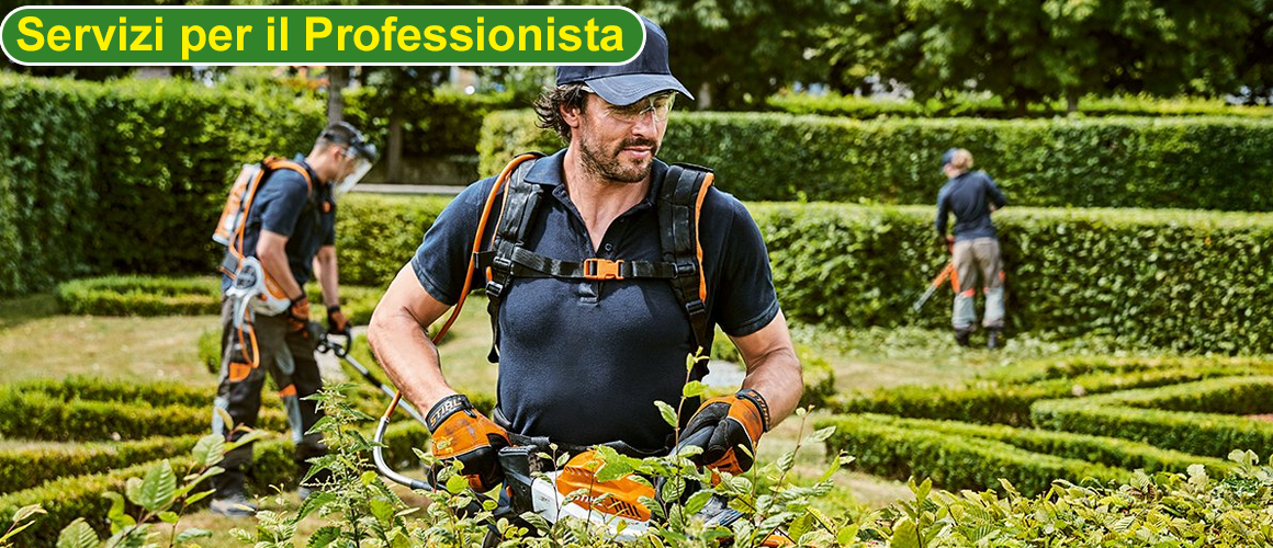 Accedi all'Area Professionisti