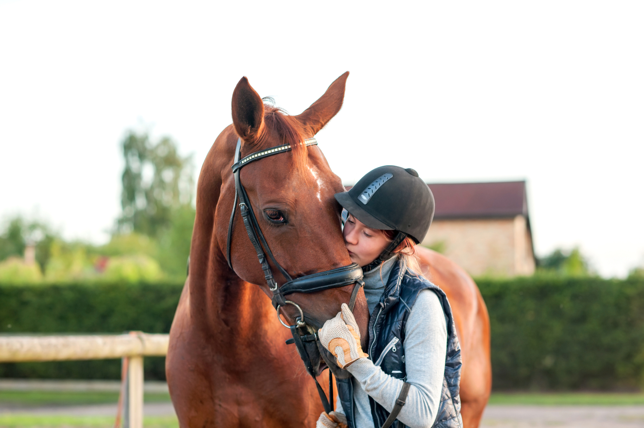 giovane-adolescente-ragazza-equitazione-baciare-la-sua-castagna-cavallojpg
