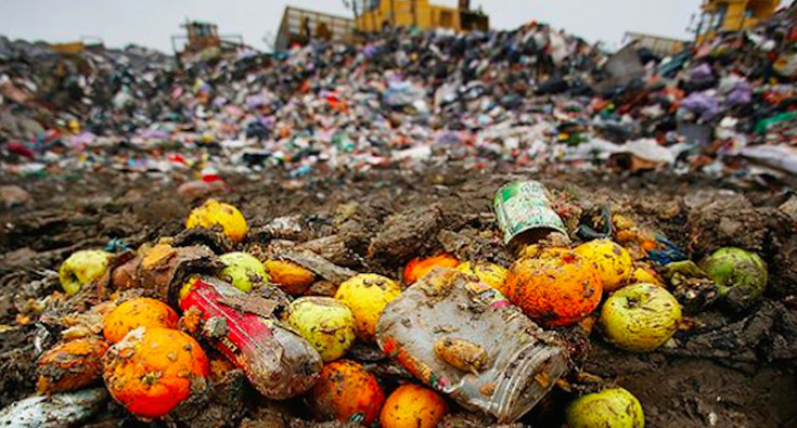 FOOD WASTE: WHICH FUTURE?