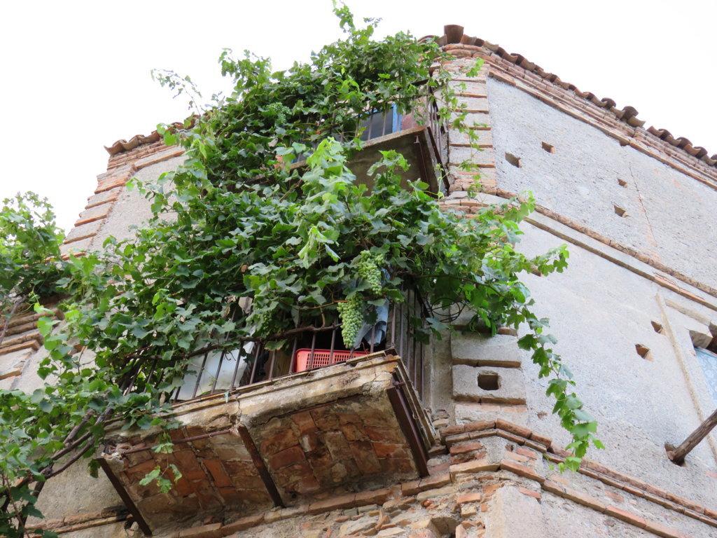 Balconi PentedattiloJPG