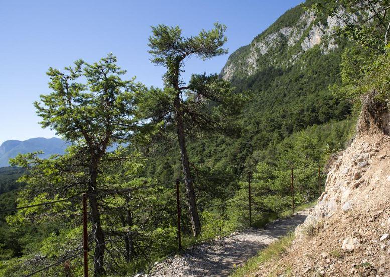 Il Sentiero MargheritaJPG