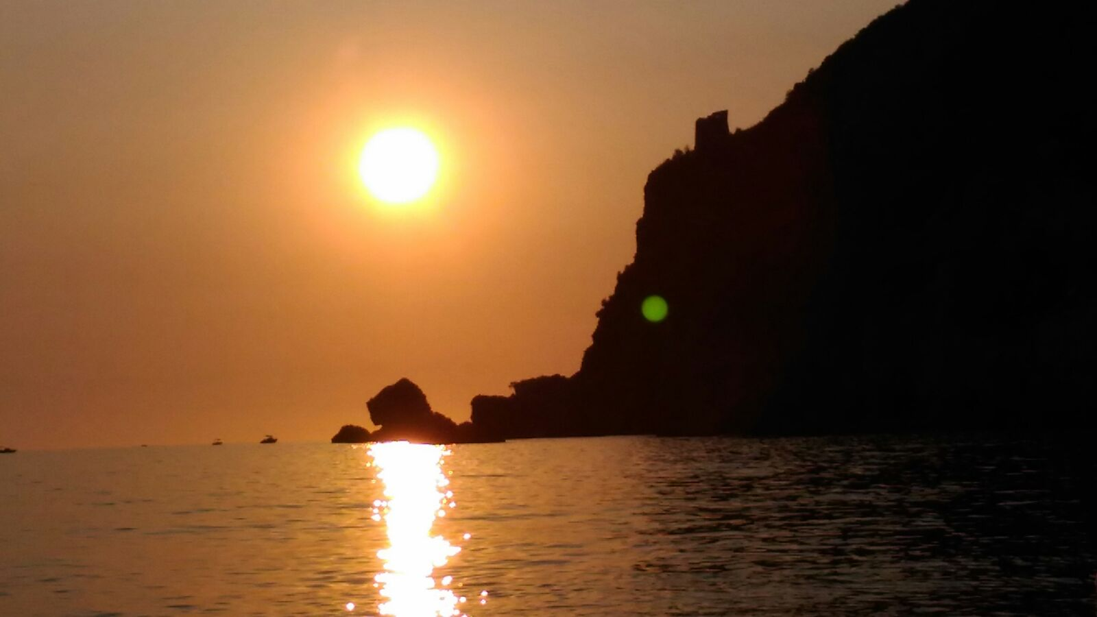 Lampetia tramontojpg