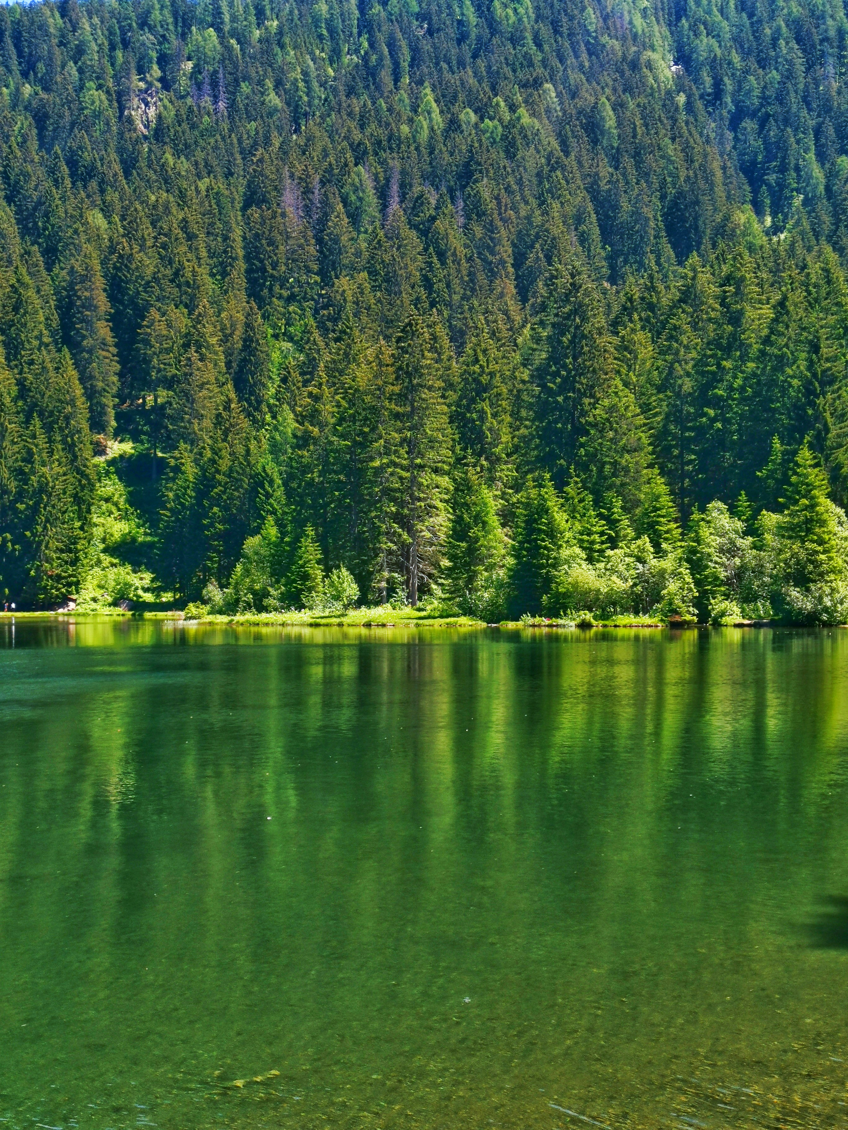 Lago dei Caprioli gruppo Adamellojpeg
