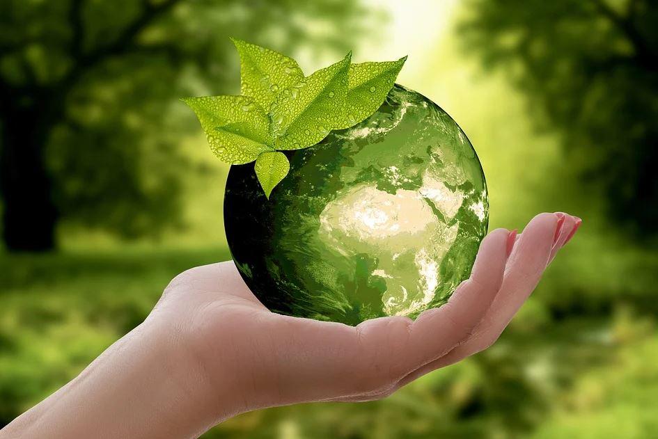 foto sostenibilitJPG