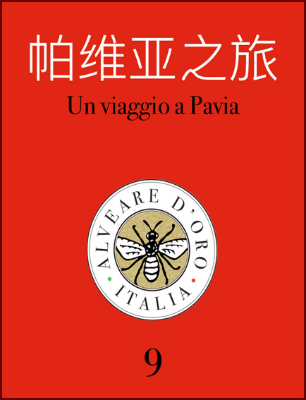 ebook pavia turismo cinese