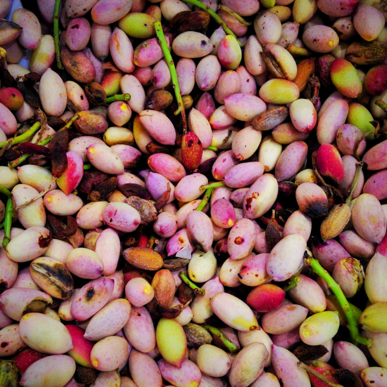 Pistachios from Bronte
