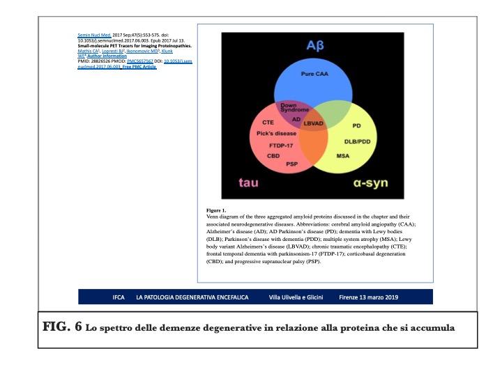 Diapositiva06jpeg
