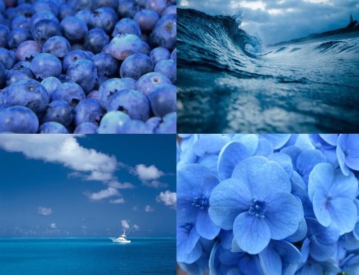 foto blu - Copiajpg