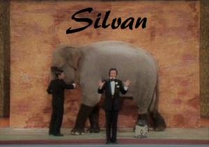 Silvan sparizione elefantejpg
